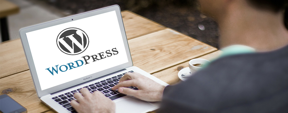 10 Reasons to Use WordPress for Developing a Website in 2018